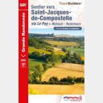 FFR - 653 - Sentier vers Saint-Jacques-de-Compostelle : Moissac-Roncevaux (Guide)