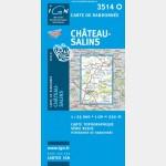 Château-Salins (Gps)