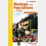 Montargis et le Pays Gâtinais à pied - P451