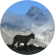 Les amis du Lac Blanc (Chamonix)