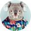 Le Koala lyonnais