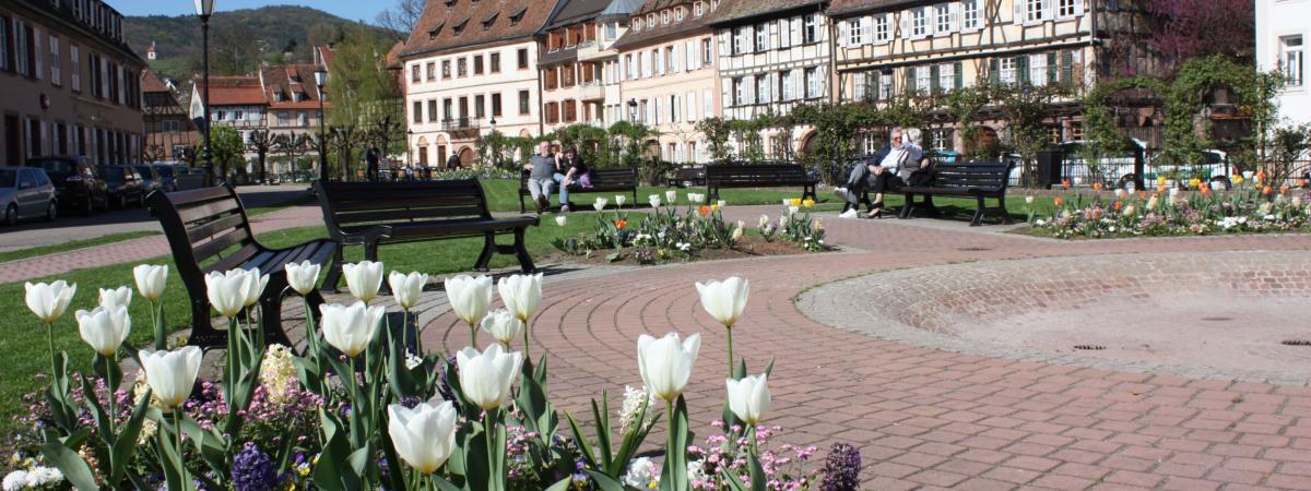 Communauté de Communes du Pays de Wissembourg