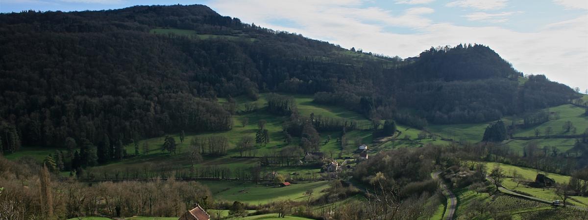 Les Billardes: gîte & chambres d'hôtes dans le vignoble du Jura