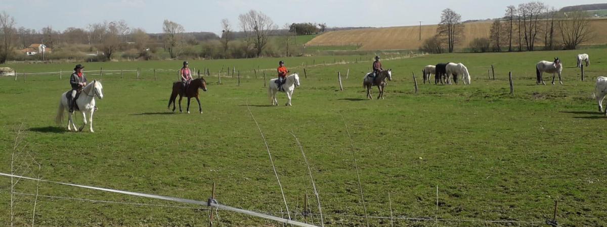 Ferme Equestre du Vallon